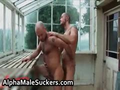 hot-alpha-males-in-gay-fucking-part4