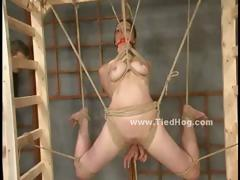 sexy-redhead-with-perky-nipples-tied-like-a-hog-and-hanged