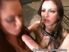 Brunette Tied Up And Face Fucked Very Roughly